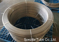 China ASTM A789 UNS S31803 Duplex Stainless Steel Pipe ,  Grade 2205 Coiled Stainless Steel Tubing company